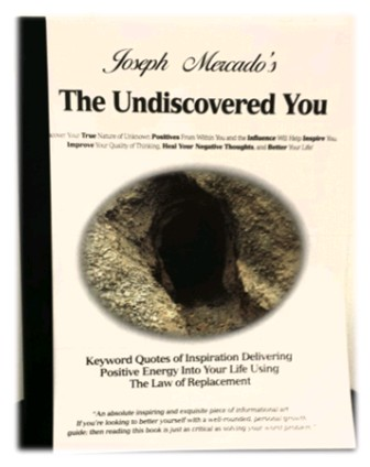 The Undiscovered You Book